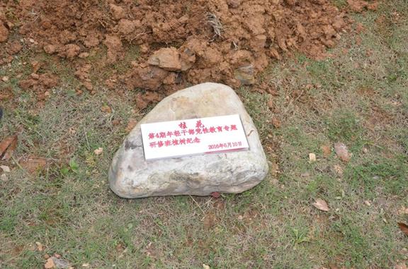 凭吊小井红军烈士墓