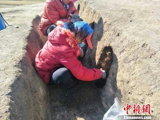 长春地区发现新石器时代遗存 填补松花江流域人类历史空白