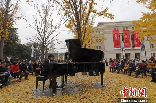 上海音乐厅举行银杏音乐会演绎音乐与自然的诗意融合