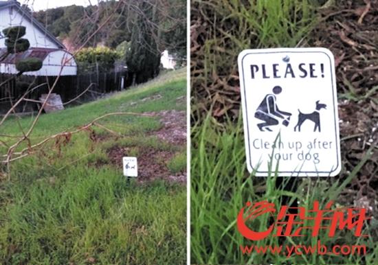 美国公共场所遛狗 要遵守什么规矩?