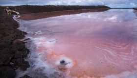 实拍西班牙岛屿绝美盐田 如同一块巨大调色盘